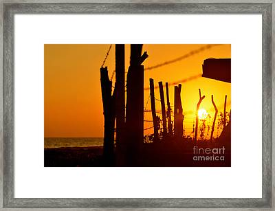 The Freedom Behind The Chains Of Life Framed Print by Eliya Yosefyan