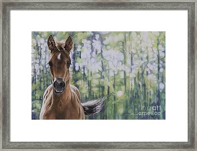 The Frilly Filly Framed Print