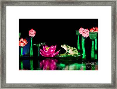 The Frog And Lotus Framed Print by Tim Gainey