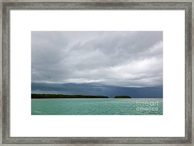 The Front Framed Print by Michelle Wiarda