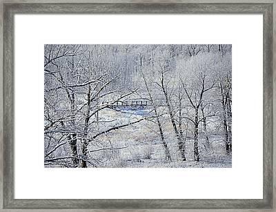 The Frozen Bridge Framed Print
