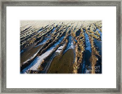 The Frozen Earth Framed Print by Liz  Alderdice