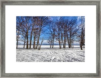 The Frozen Spring Framed Print