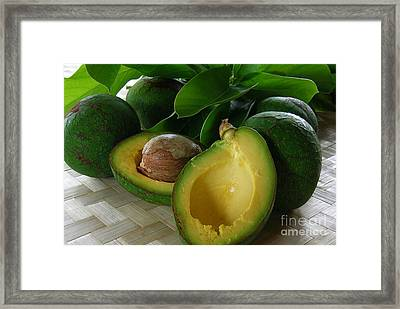 The Fujikawa Avocado Framed Print by James Temple