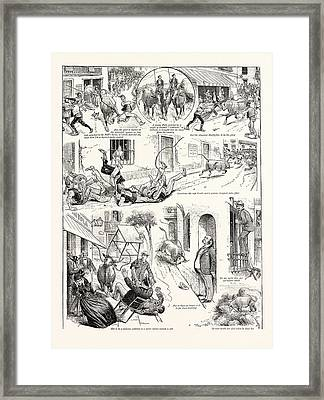 The Galumbo, A Popular Sport In Spain And The Sport Framed Print