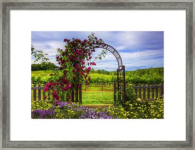 The Garden At The Winery Framed Print by Debra and Dave Vanderlaan