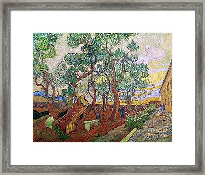 The Garden Of St Pauls Hospital At St. Remy Framed Print by Vincent Van Gogh
