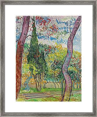 The Garden Of St Pauls Hospital Framed Print by Vincent van Gogh