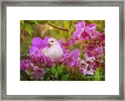 The Garden Of White Dove Framed Print