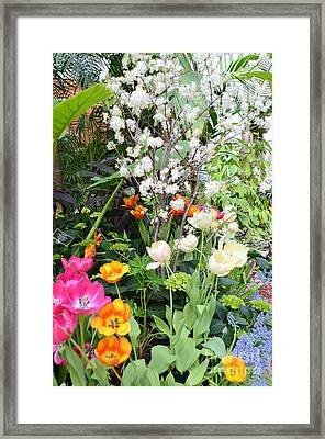 The Gardens Framed Print by Kathleen Struckle