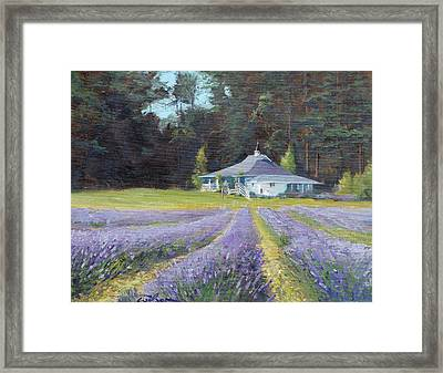 The Gatehouse Store Lavender Farm Framed Print by Ron Wilson
