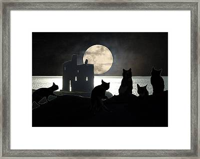The Gathering Framed Print by I'ina Van Lawick