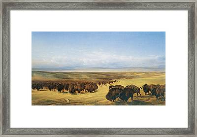 The Gathering Of The Herd Framed Print by William Jacob Hays