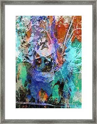 The Gato Framed Print
