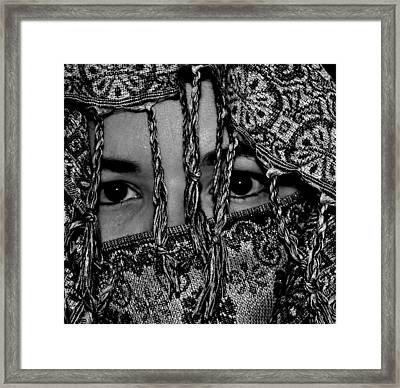 The Gaze Framed Print by Michelle McPhillips