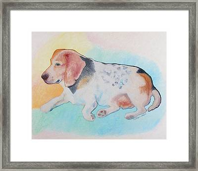 The Gentle Leader Framed Print