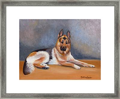The German Sheppard Framed Print