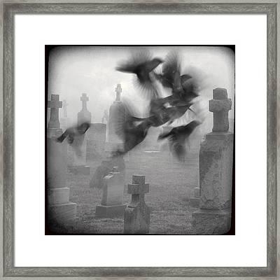 The Ghost Birds Framed Print