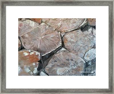 The Giant's Causeway Framed Print by Brenda Brown
