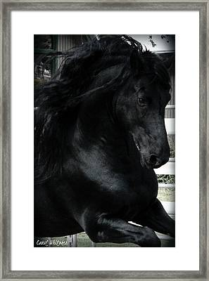 The Gift Framed Print by Royal Grove Fine Art