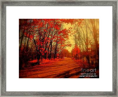 The Ginger Path Framed Print