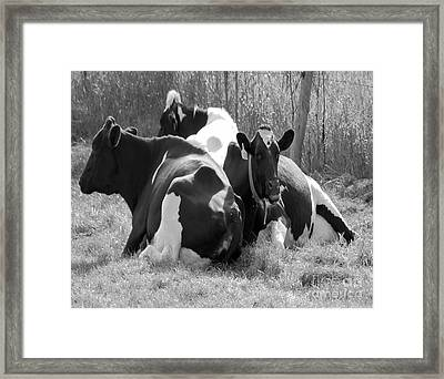 The Girls Framed Print by Jim Rossol