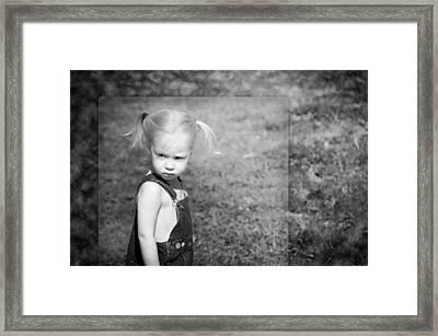 The Glare Framed Print by Steven Michael