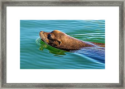 The Glide Framed Print by Denise Darby