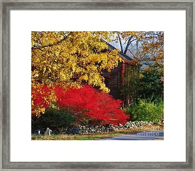 The Glory Of Fall 2 Framed Print by Marcus Dagan