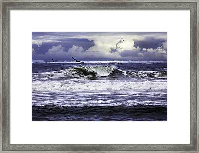 The Glory Of Morning On The Oregon Coast Framed Print