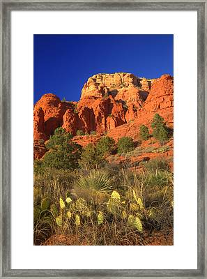 The Glory Of The Desert Red Rocks 1 Framed Print