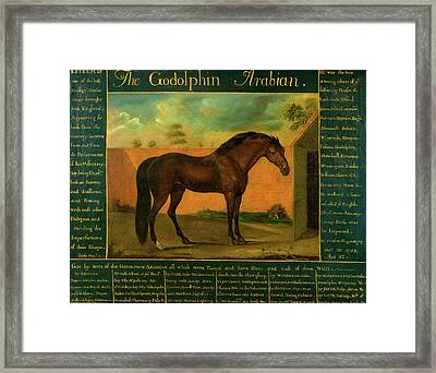 The Godolphin Arabian Signed Framed Print by Litz Collection
