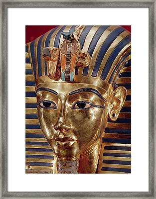 The Gold Mask, From The Treasure Of Tutankhamun C.1370-52 Bc C.1340 Bc Gold Inlaid Framed Print by Egyptian 18th Dynasty