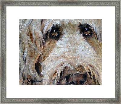 The Golden Child Framed Print by Mary Sparrow