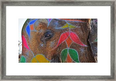 The Golden Eye Of The Elephant - Jaipur India Framed Print by Kim Bemis