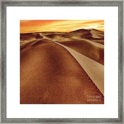 The Golden Hour Anza Borrego Desert Framed Print by Bob and Nadine Johnston