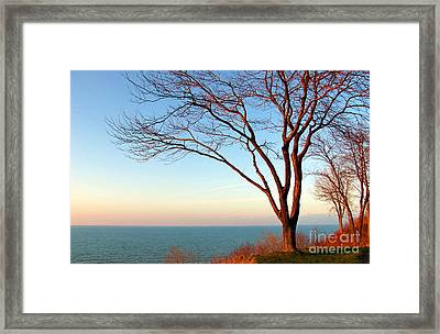 The Golden Sunset. Framed Print by Dipali S