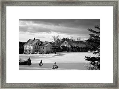 The Good Life Framed Print by Sue OConnor