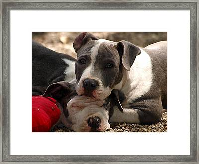 The Good Pillow Framed Print by Camille Lopez