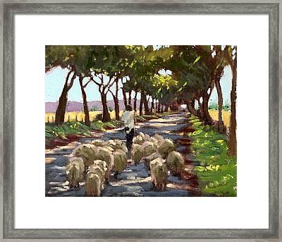 The Good Shepherd Framed Print by David Zimmerman