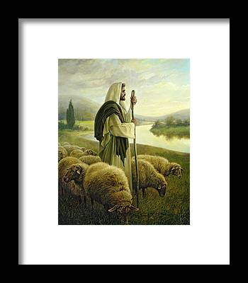 Sheep Framed Prints