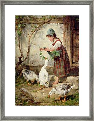 The Goose Girl Framed Print by Antonio Montemezzano