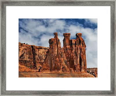 Framed Print featuring the photograph The Gossips by Shirley Mangini