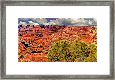 The Grand Canyon Dead Horse Point Framed Print by Bob and Nadine Johnston