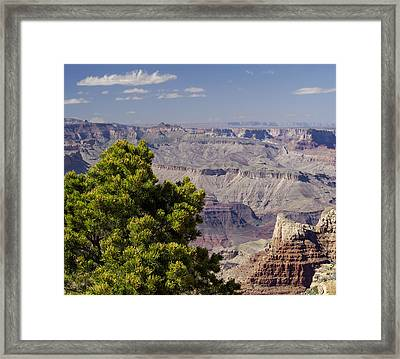 The Grand Canyon Framed Print by Marianne Campolongo