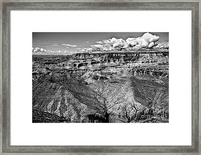 The Grand Canyon Framed Print by Bob and Nadine Johnston
