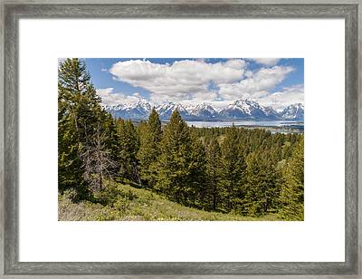 The Grand Tetons From Signal Mountain - Grand Teton National Park Wyoming Framed Print by Brian Harig