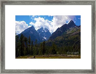 The Grand Tetons  Framed Print by Terry Horstman