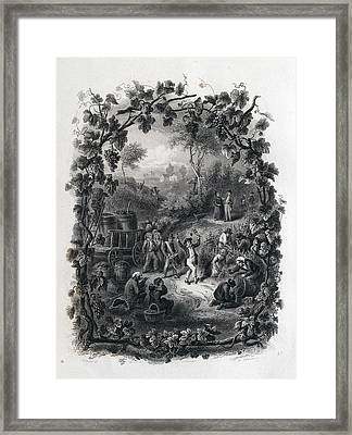 The Grapes Harvest In France Framed Print by French School