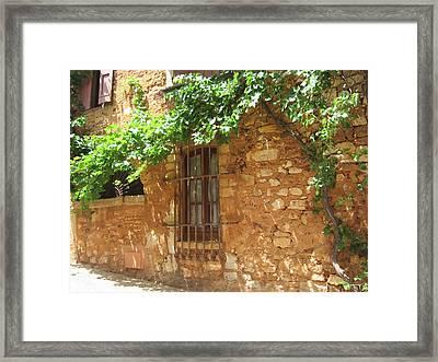 The Grapevine Framed Print